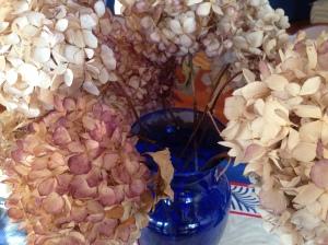 My Dead Hydrangeas